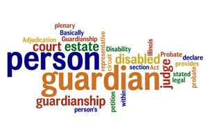 http://cidainfo.com/wp-content/uploads/2018/04/guardianship_compressed_jiit10.png